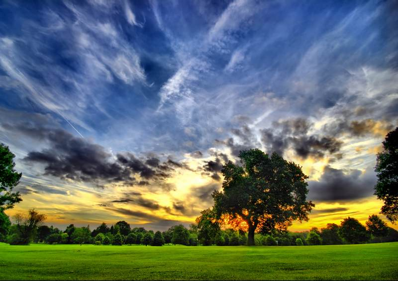 Shutterstock 24037810
