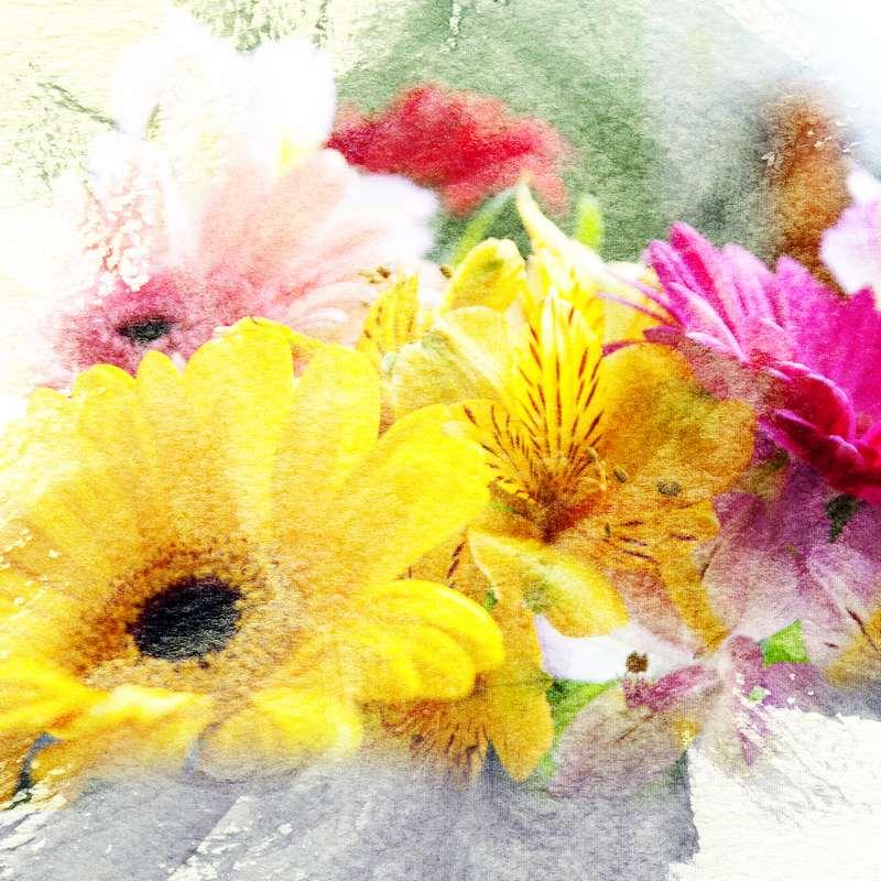 Shutterstock 57432871