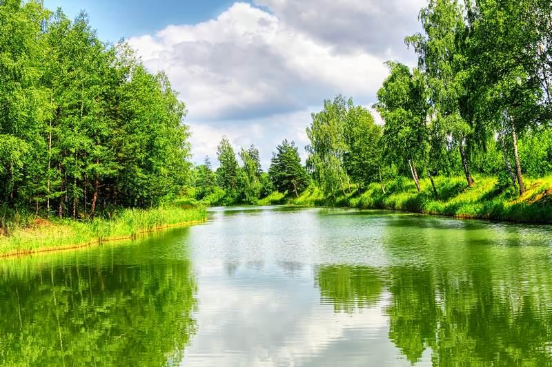 Shutterstock 71090377