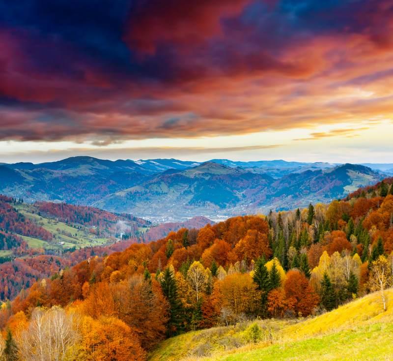 Shutterstock 86543017