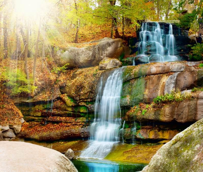 Shutterstock 88479376