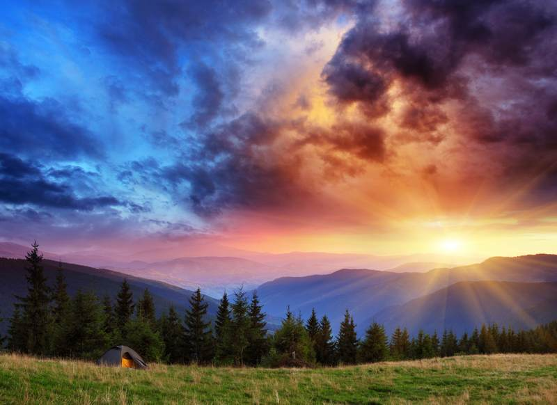 Shutterstock 95295286