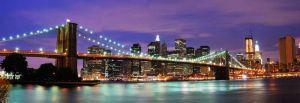 Shutterstock 54652672