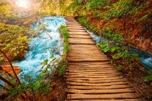 Shutterstock 55391569